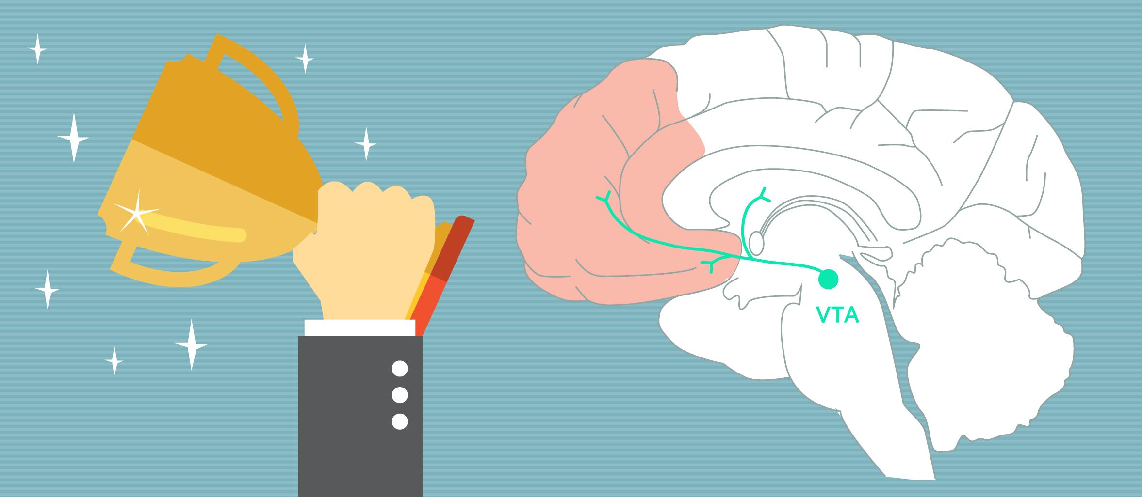 дофамин и мотивация