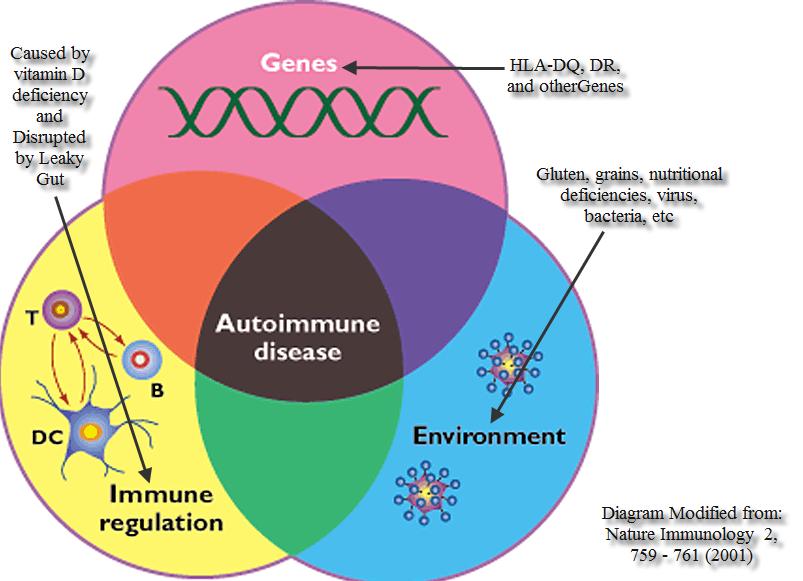 Влияние генов, иммунитета и микроорганизмов на развитие аутоиммунных заболеваний