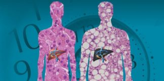 эпигенетика против гена ожирения