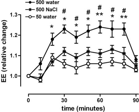 вода стимулирует метаболизм и помогает похудеть