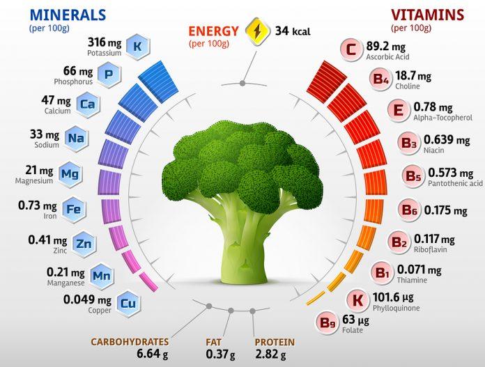 Содержание витаминов и минералов в брокколи