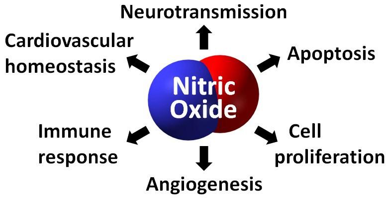 Оксид азота