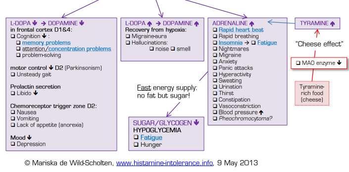 Непереносимость гистамина вызывает множество симптомов