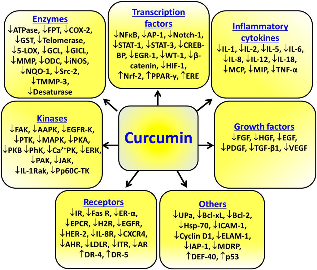 Куркумин оказывает лечебное действие