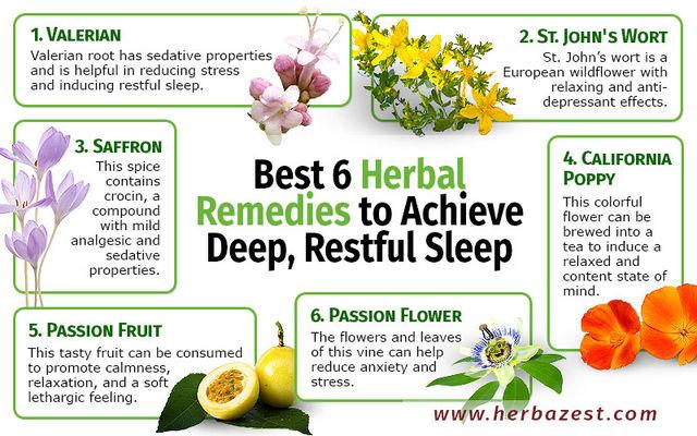 Лучшие растения для лечения бессонницы