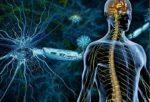 Рассеянный склероз лечение