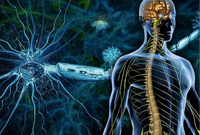 Новое в лечении рассеянного склероза