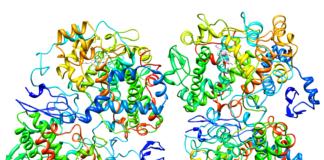 ЦОГ-2 ингибиторы