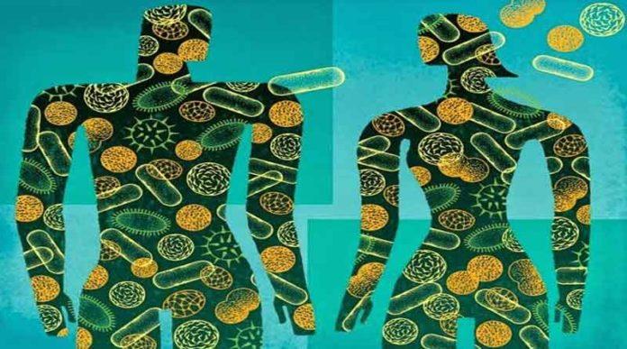 Как микрофлора кишечника влияет на наше здоровье