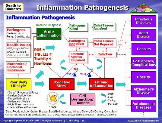 Патогенез аутоиммунного воспаления