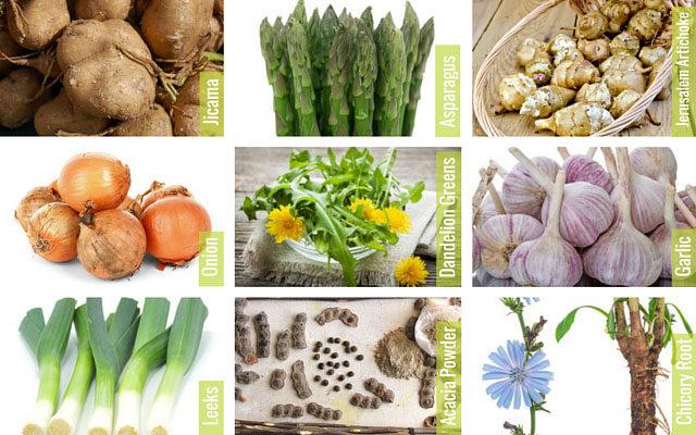 Продукты питания богатые пребиотиками