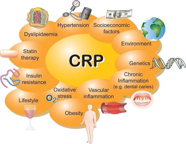 Факторы, влияющие на рост С-реактивного белка (СРБ)