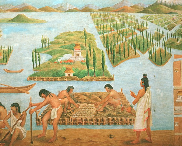 Древние индейцы выращивали чиа