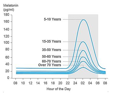 Изменение выработки мелатонина организмом при старении.