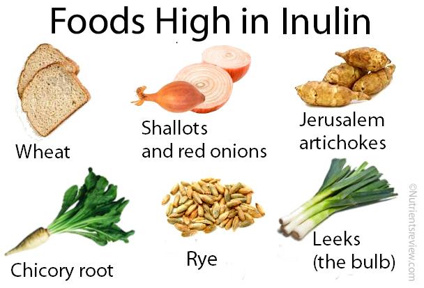 Природные источники инулина