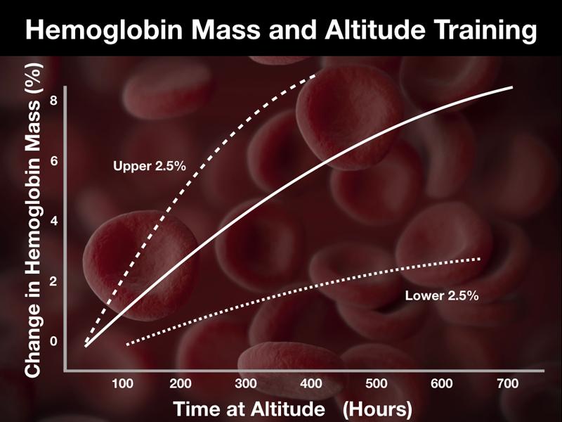 Гемоглобин увеличивается на высоте