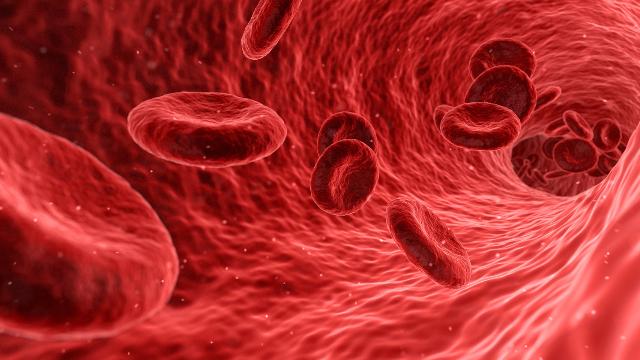 При анемии какой гемоглобин