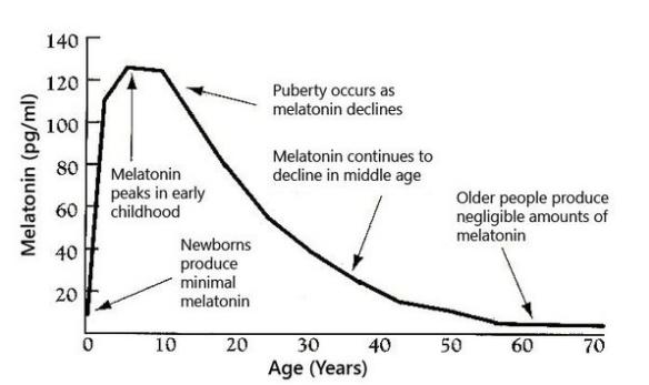 Уменьшение уровня мелатонина с возрастом