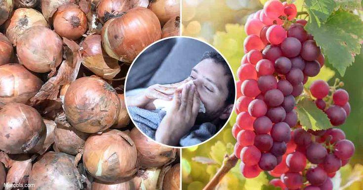 Кверцетин помогает предотвратить простуду