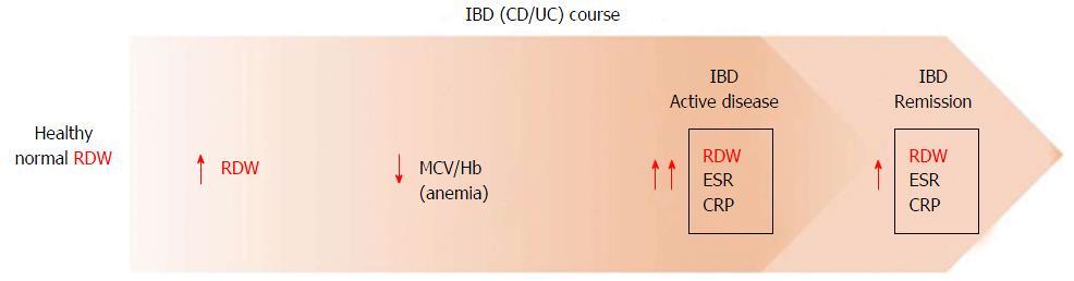 RDW увеличивается при аутоиммунных заболеваниях