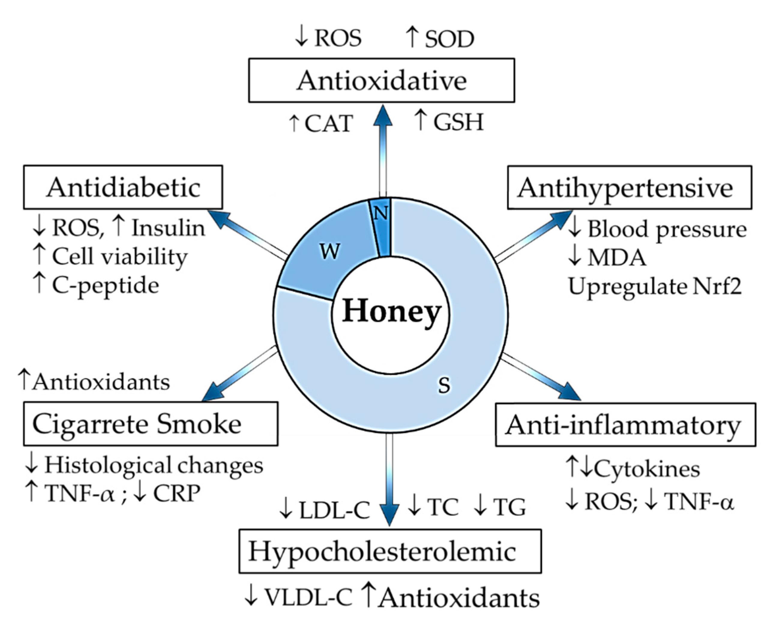 Мёд предотвращает различные заболевания