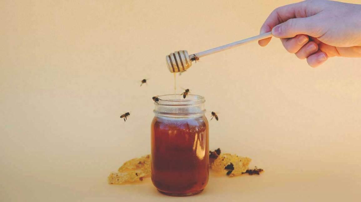 Мёд защищает сердце