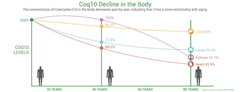 Снижение коэнзима Q10 с возрастом