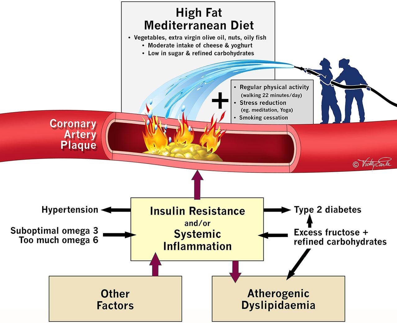 Мононенасыщенные жиры предотвращают сердечно-сосудистые заболевания