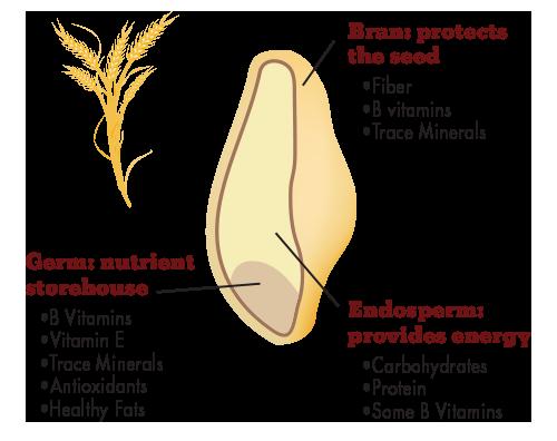 Состав цельного зерна
