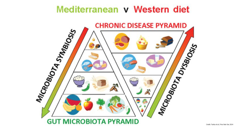 Пирамиды западной и средиземноморской диеты