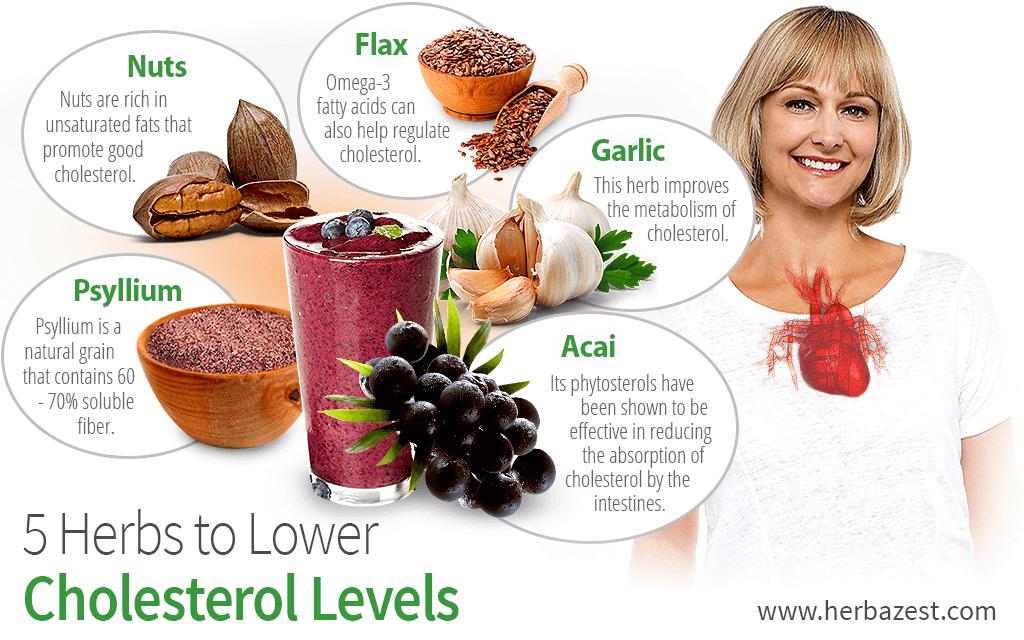 Вещества, снижающие уровень холестерина в крови