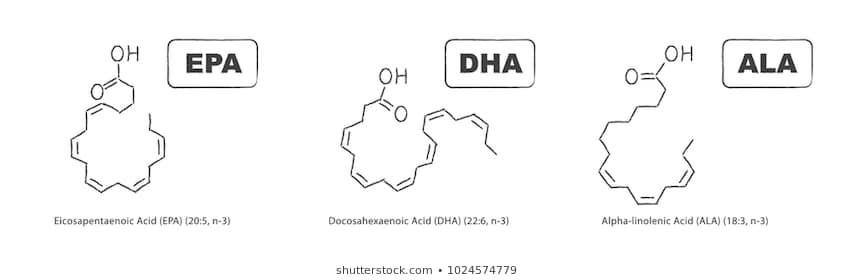 Альфа-линолевая кислота ALA