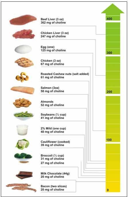 Продукты питания богатые холином