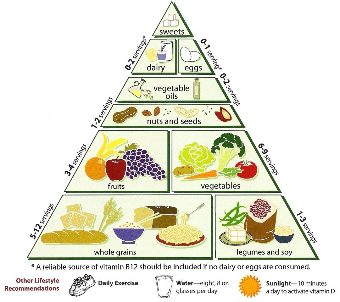 Пирамида вегетарианской диеты