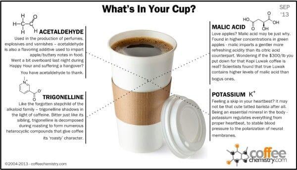 Алкалоид тригонеллин содержится в кофе