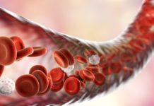 Ингибиторы АПФ из природных веществ