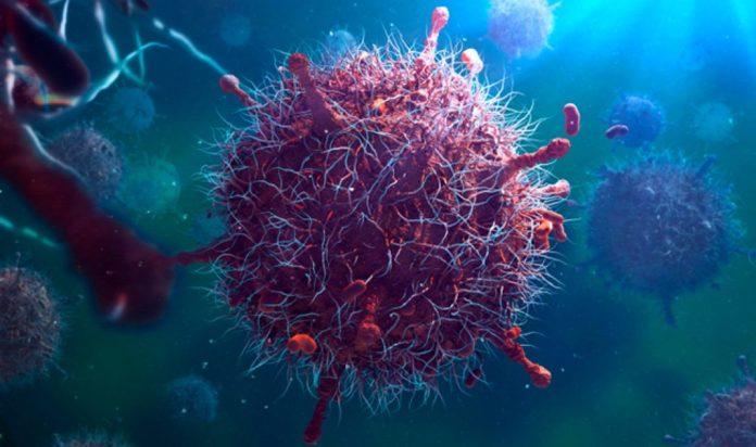 Противовирусная защита клеток организма