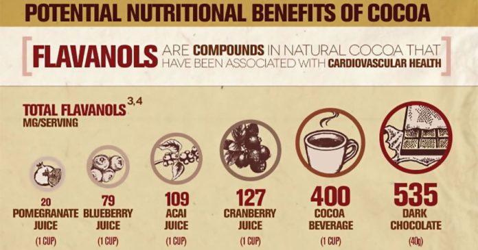 Содержание флавоноидов в какао