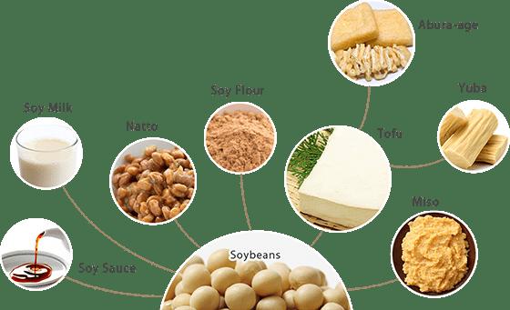 Соевые продукты питания в японской кухне