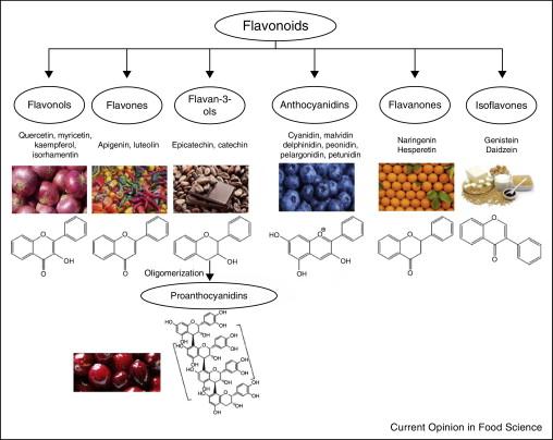 Различные флавоноиды