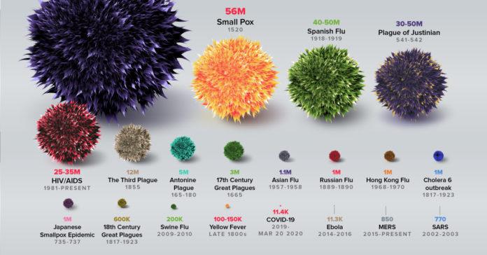 Сравнение размеров вирусов