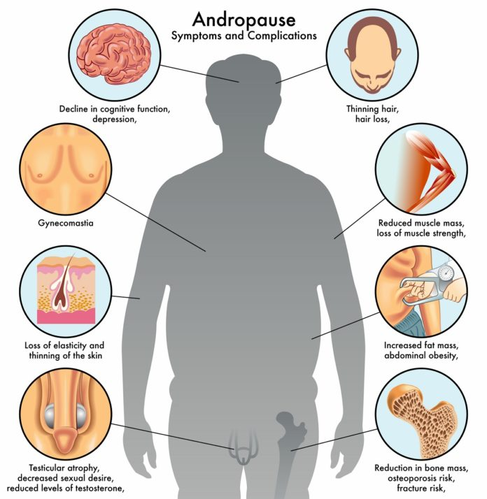 Понижение тестостерона приводит к изменению в организме у мужчин