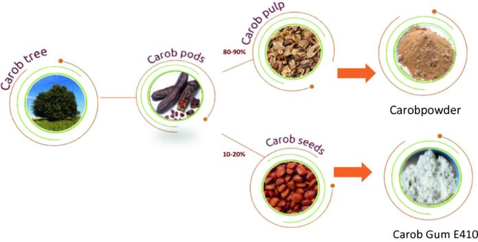 Из плодов кэроб создаются разные продукты
