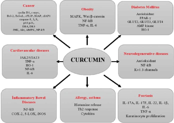 Влияние куркумина при различных заболеваниях