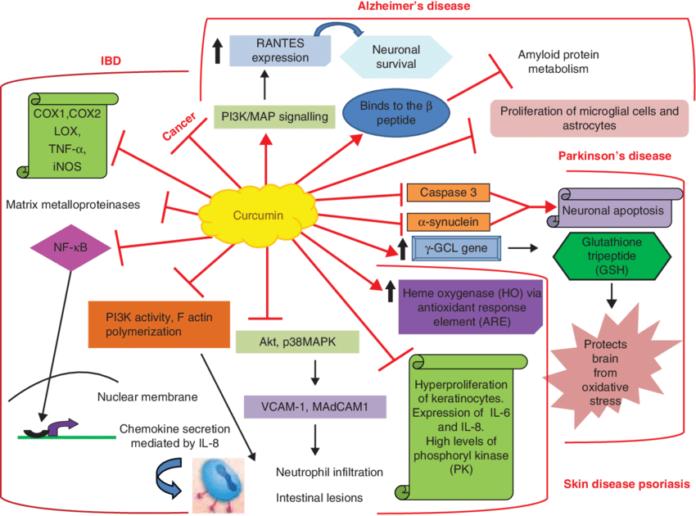 Куркумин помогает при различных заболеваниях