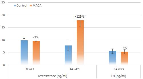 Мака перуанская увеличивает уровень тестостерона