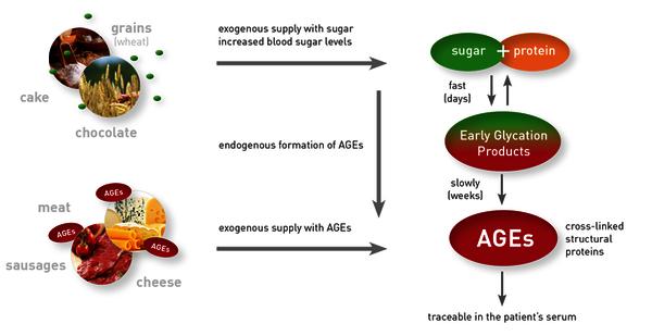 Конечные продукты гликирования (AGE) могу поступать в организм вместе с пищей