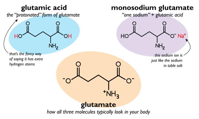 Глутаминовая кислота- химическая формула