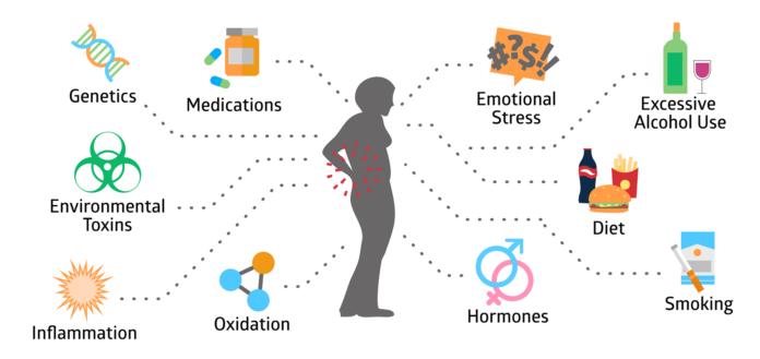 Медь может уменьшить скорость развития остеопороза