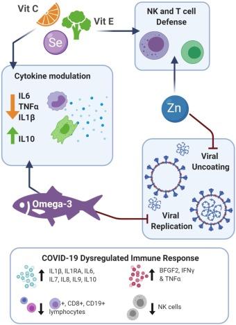 БАД в профилактике COVID-19